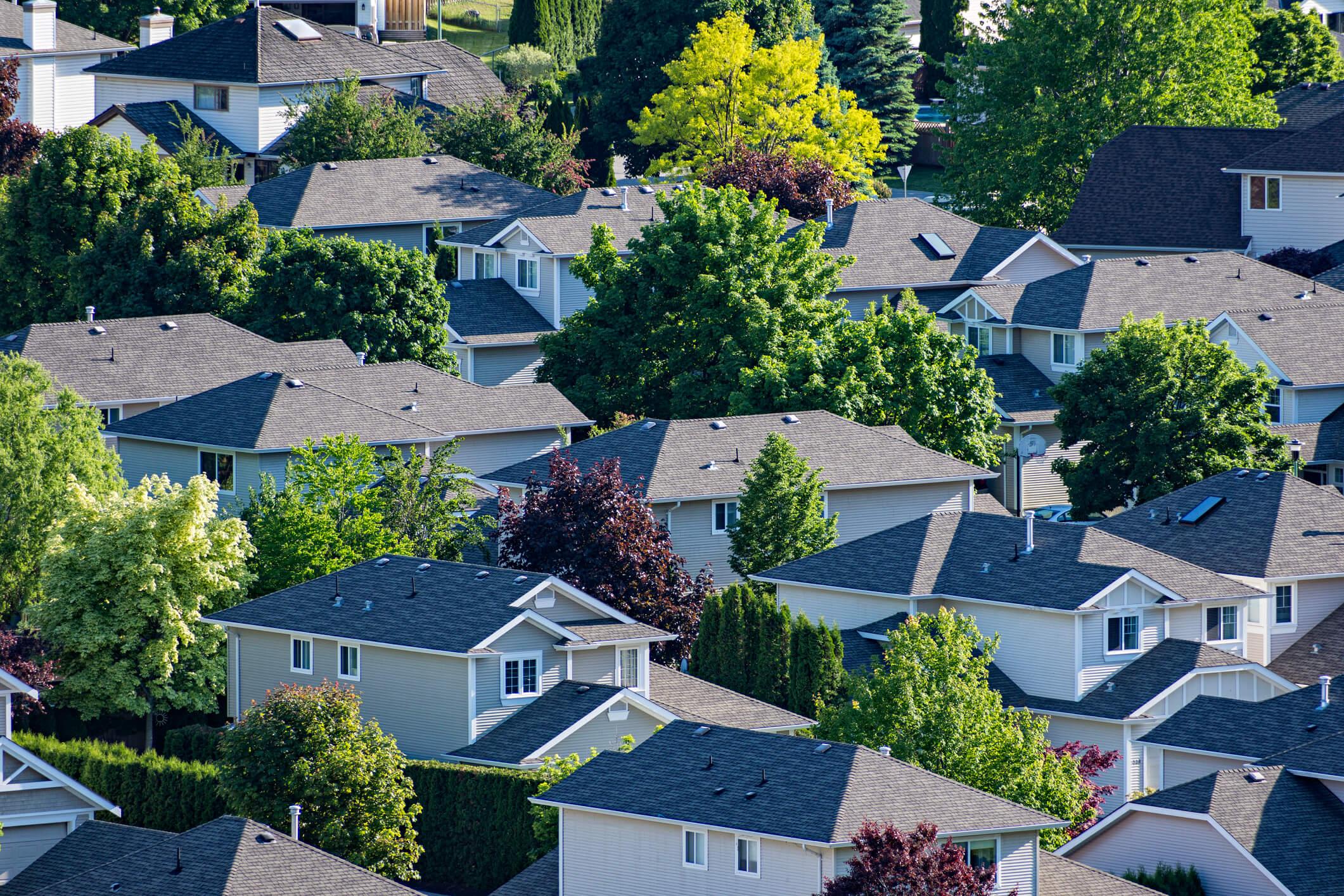 Neighborhood Blog Compressed
