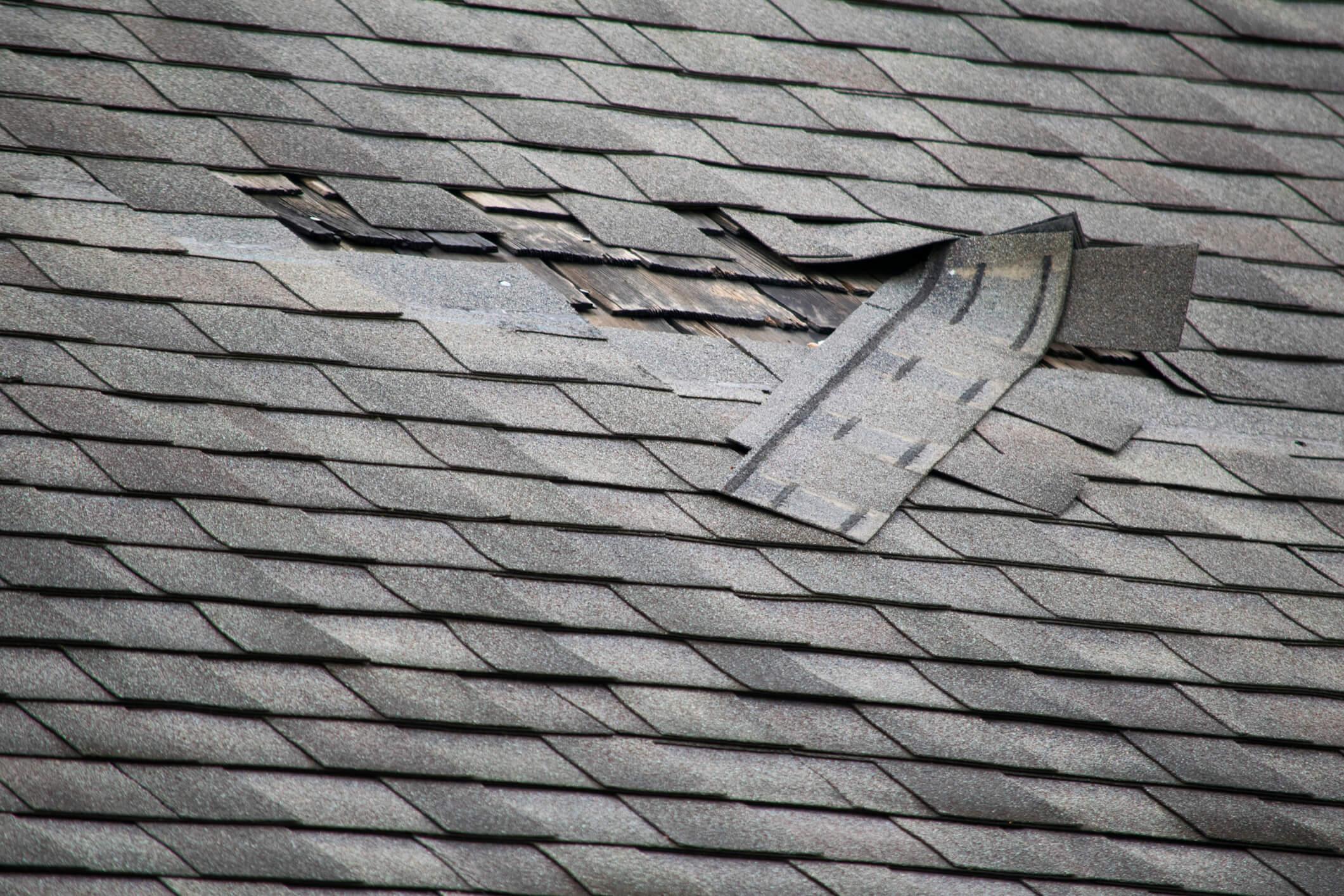 Roof Image Blog Compressed